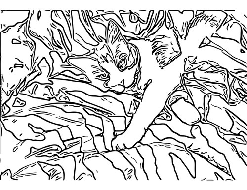 Animal Camouflage Coloring Pages Printable : Free Cat Art Coloring Pages