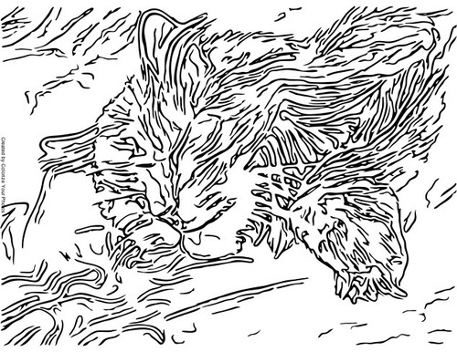 Free Coloring Pages Of Camouflage Camouflage Coloring Pages